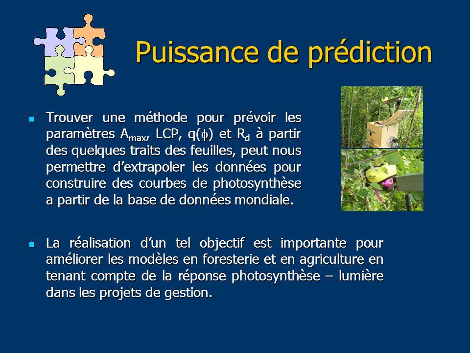 Puissance de prédiction Trouver une méthode pour prévoir les paramètres A max, LCP, q(  ) et R d à partir des quelques traits des feuilles, peut nous permettre d'extrapoler les données pour construire des courbes de photosynthèse a partir de la base de données mondiale.