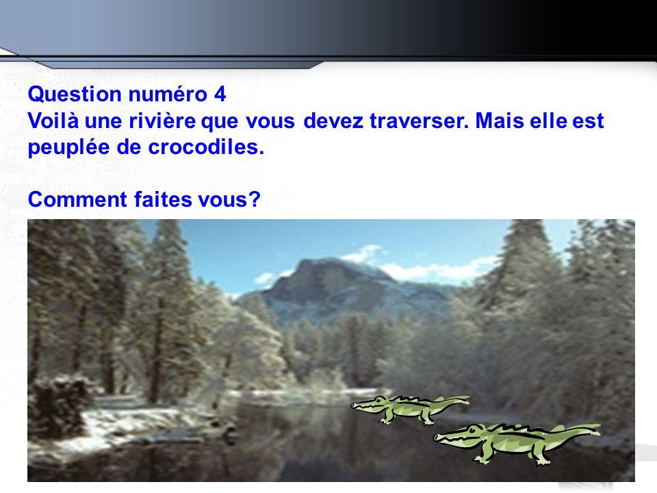 Question numéro 4 Voilà une rivière que vous devez traverser. Mais elle est peuplée de crocodiles. Comment faites vous?