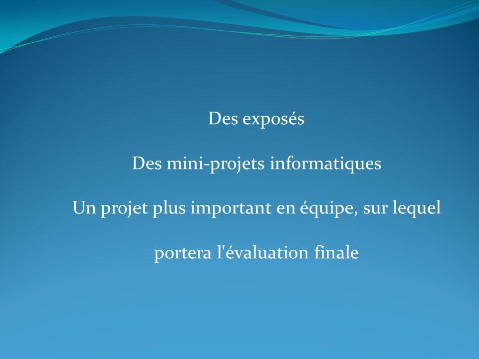 Des exposés Des mini-projets informatiques Un projet plus important en équipe, sur lequel portera l évaluation finale