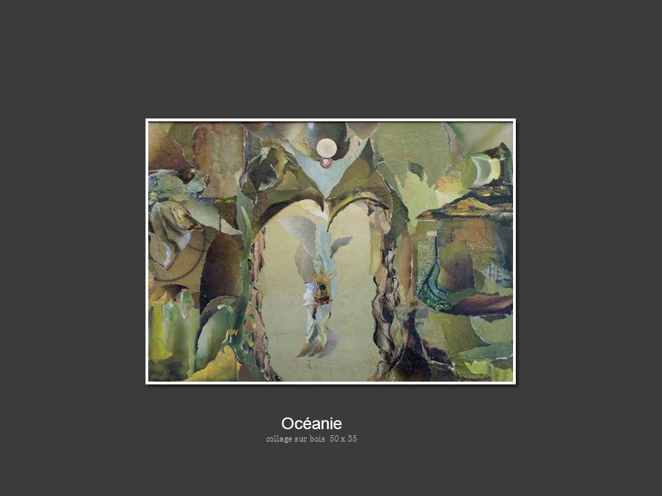 Océanie collage sur bois 50 x 35