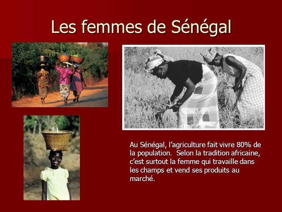 Les femmes de Sénégal Au Sénégal, l'agriculture fait vivre 80% de la population. Selon la tradition africaine, c'est surtout la femme qui travaille da