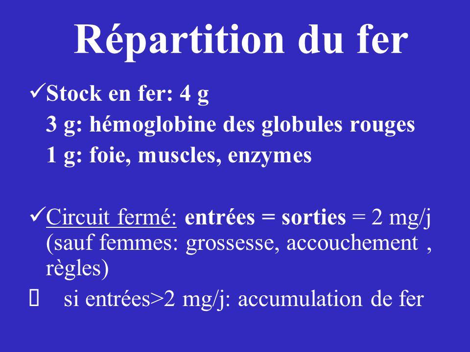 Stock en fer: 4 g 3 g: hémoglobine des globules rouges 1 g: foie, muscles, enzymes Circuit fermé: entrées = sorties = 2 mg/j (sauf femmes: grossesse, accouchement, règles)  si entrées>2 mg/j: accumulation de fer Répartition du fer