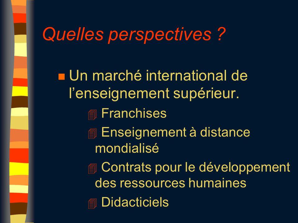 Quelles perspectives ? n Un marché international de l'enseignement supérieur. 4 Franchises 4 Enseignement à distance mondialisé 4 Contrats pour le dév