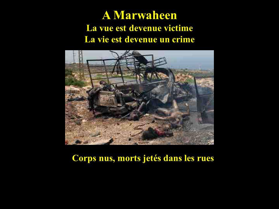 Le bilan au Liban Six jours de Juillet 2006-08-27 á Marwaheen