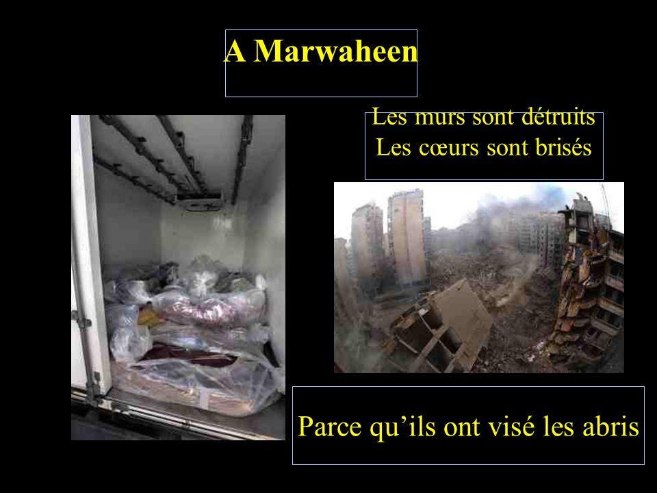 A Marwaheen Les morts sont jetés Sans aucune sécurité