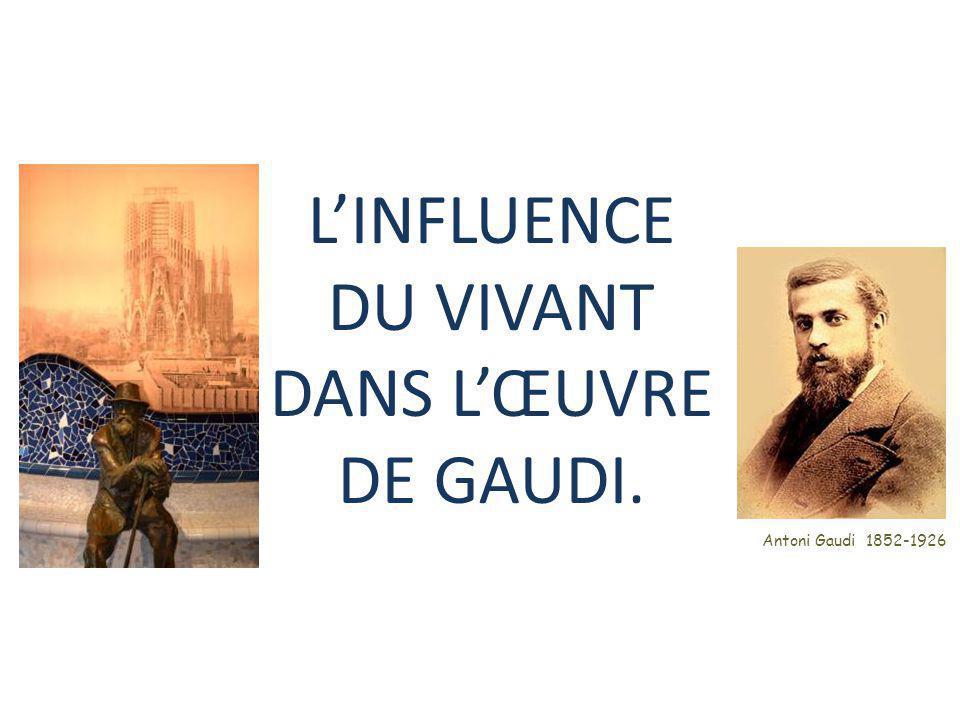 L'INFLUENCE DU VIVANT DANS L'ŒUVRE DE GAUDI. Antoni Gaudi 1852-1926