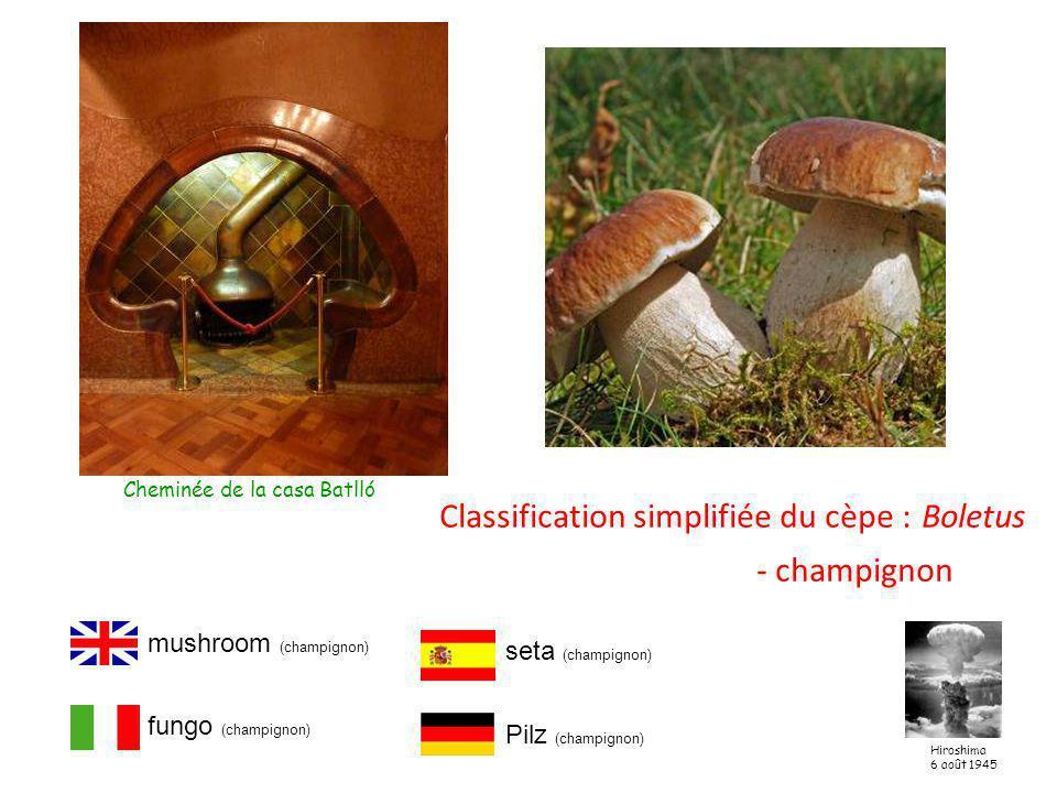 Classification simplifiée du cèpe : Boletus - champignon Cheminée de la casa Batlló mushroom (champignon) fungo (champignon) seta (champignon) Pilz (champignon) Hiroshima 6 août 1945