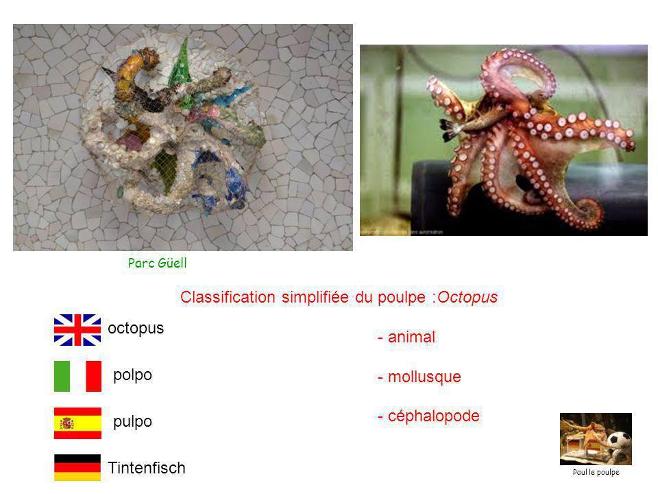 Parc Güell Classification simplifiée du poulpe :Octopus - animal - mollusque - céphalopode Tintenfisch polpo pulpo octopus Paul le poulpe