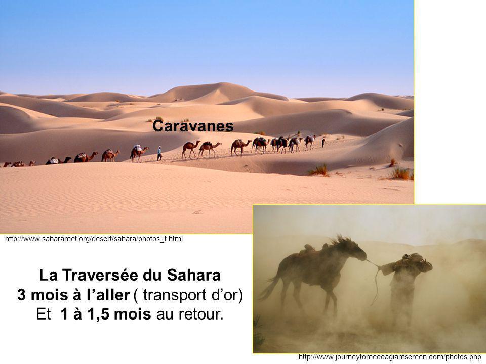http://www.saharamet.org/desert/sahara/photos_f.html http://www.journeytomeccagiantscreen.com/photos.php La Traversée du Sahara 3 mois à l'aller ( tra