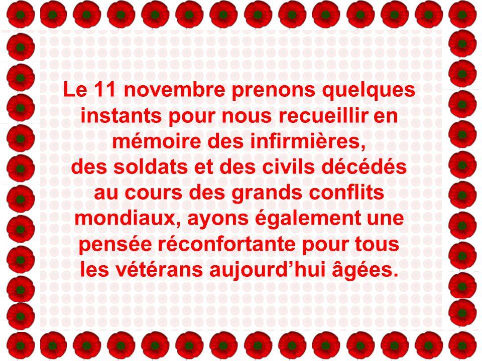 Le coquelicot est l'emblème du souvenir, il rappelle cette fleur d'un rouge vif qui pousse dans les endroits des champs de bataille en France et en Be
