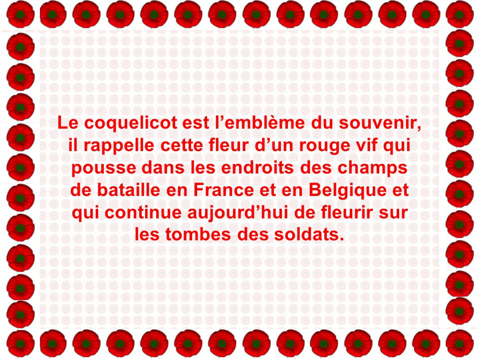 Le coquelicot est l'emblème du souvenir, il rappelle cette fleur d'un rouge vif qui pousse dans les endroits des champs de bataille en France et en Belgique et qui continue aujourd'hui de fleurir sur les tombes des soldats.