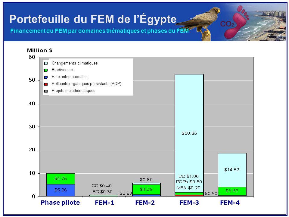 Financement du FEM par domaines thématiques et phases du FEM Phase pilote FEM-1 FEM-2 FEM-3 FEM-4 Changements climatiques Biodiversité Eaux internationales Polluants organiques persistants (POP) Projets multithématiques