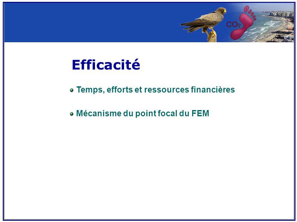 Efficacité Temps, efforts et ressources financières Mécanisme du point focal du FEM