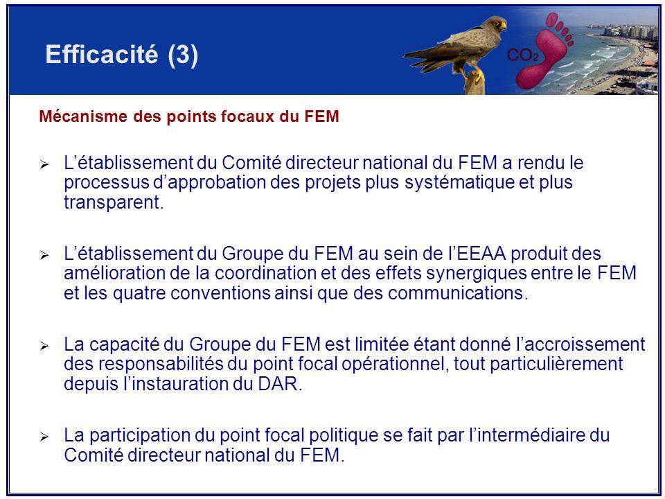 Mécanisme des points focaux du FEM  L'établissement du Comité directeur national du FEM a rendu le processus d'approbation des projets plus systématique et plus transparent.
