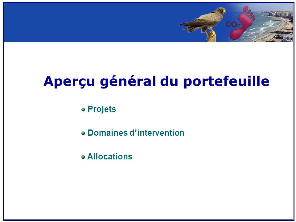 Aperçu général du portefeuille Projets Domaines d'intervention Allocations
