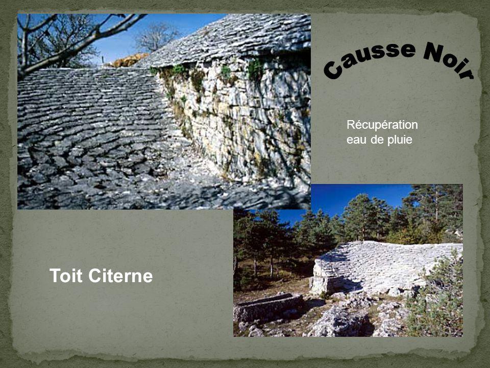 Arche de renfort Chéneau en pierre