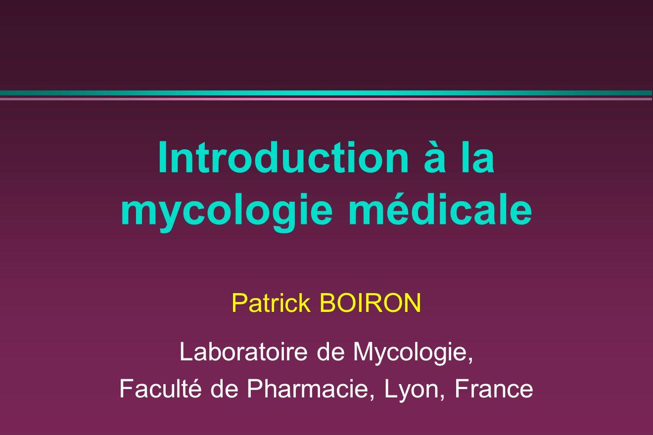 Les agents des mycoses peuvent avoir une origine endogène ou exogène