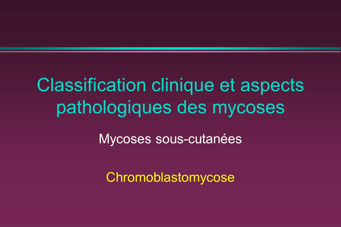 Classification clinique et aspects pathologiques des mycoses Mycoses sous-cutanées Chromoblastomycose