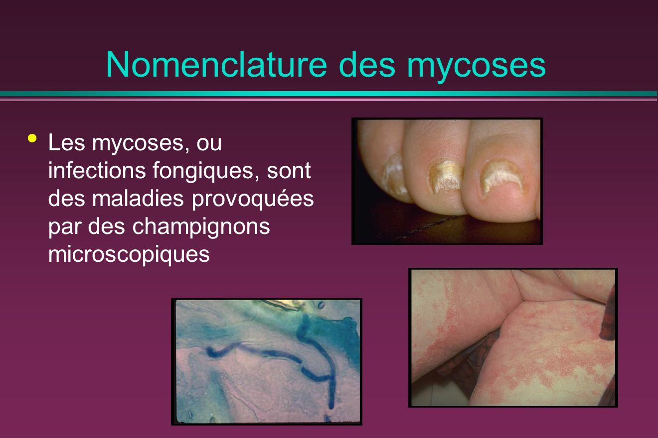 Mycoses profondes La terminologie suivante devrait être utilisée : Mycose septicémique, lorsqu une ou plusieurs hémocultures sont positives Mycose viscérale profonde, lorsqu un viscère ou un organe profond est atteint Mycose disséminée, lorsqu au moins deux organes profonds sont atteints