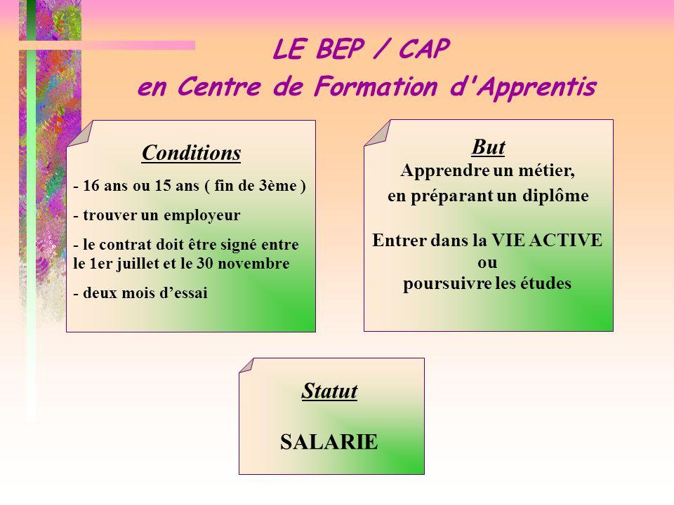 LE BEP / CAP en Centre de Formation d'Apprentis Conditions - 16 ans ou 15 ans ( fin de 3ème ) - trouver un employeur - le contrat doit être signé entr