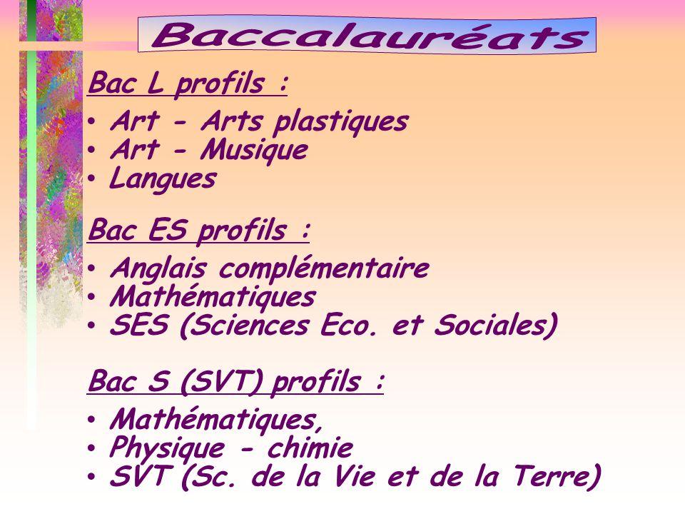 Bac L profils : Art - Arts plastiques Art - Musique Langues Bac ES profils : Anglais complémentaire Mathématiques SES (Sciences Eco. et Sociales) Bac