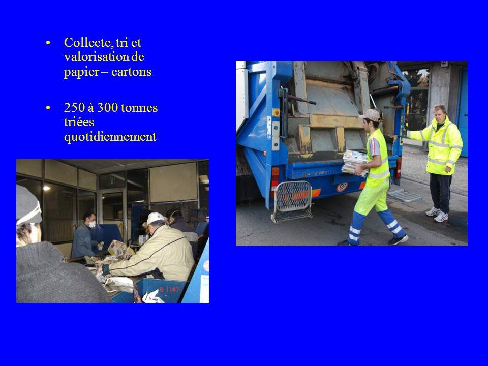 Collecte, tri et valorisation de papier – cartons 250 à 300 tonnes triées quotidiennement