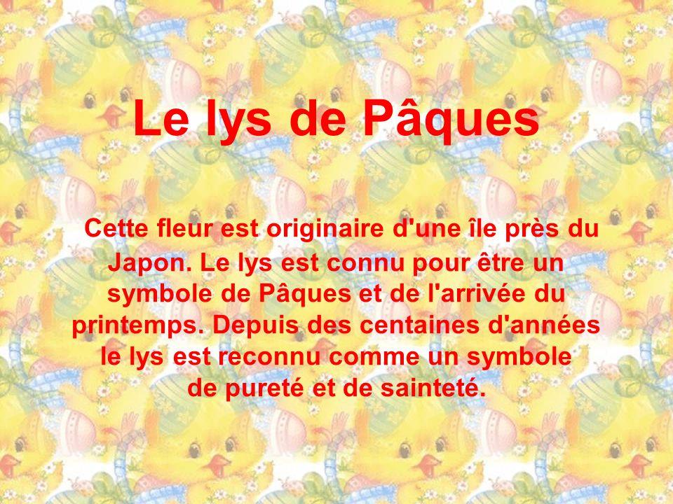 La brebis de Pâques La brebis a toujours eu une consonance religieuse et a depuis le commencement des temps représentée la pureté et l'innocence. Il y
