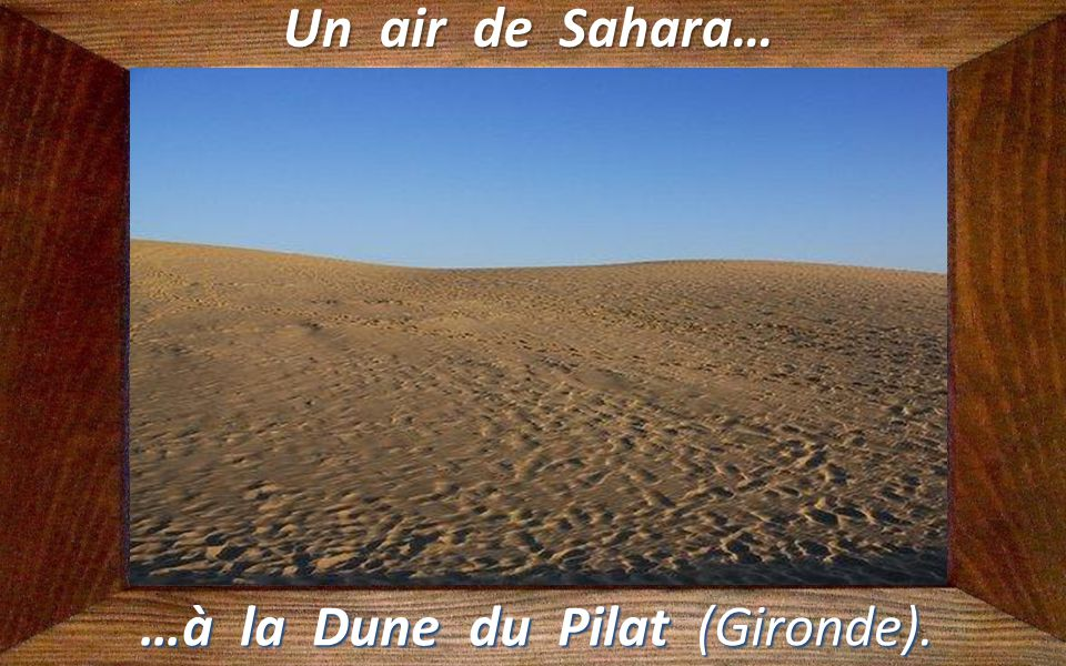 Un air de Chine… …à Chinagora (Val-de-Marne).