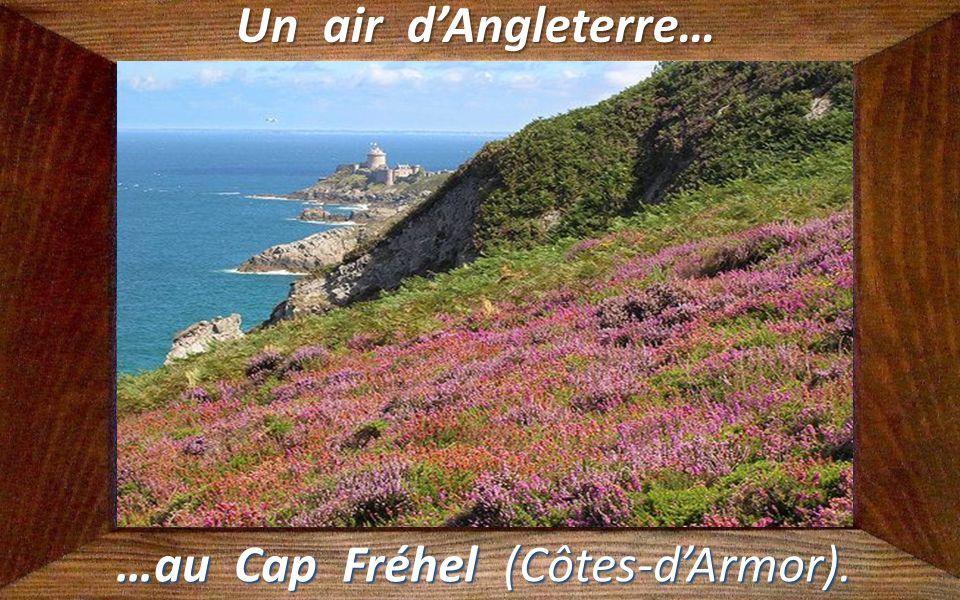 Un air de Seychelles… …en Corse.