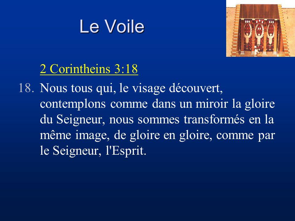Le Voile 2 Corintheins 3:18 18.Nous tous qui, le visage découvert, contemplons comme dans un miroir la gloire du Seigneur, nous sommes transformés en