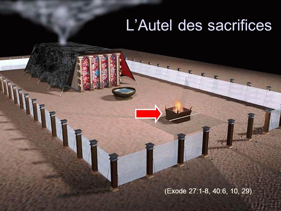 L'Autel des sacrifices (Exode 27:1-8, 40:6, 10, 29)