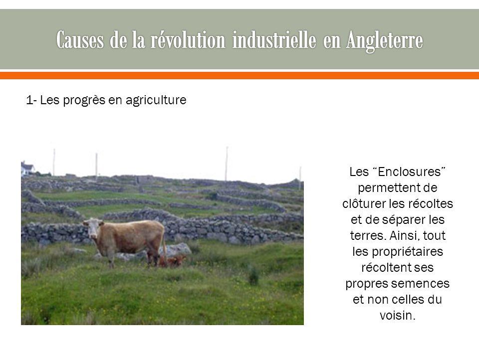 """1- Les progrès en agriculture Les """"Enclosures"""" permettent de clôturer les récoltes et de séparer les terres. Ainsi, tout les propriétaires récoltent s"""