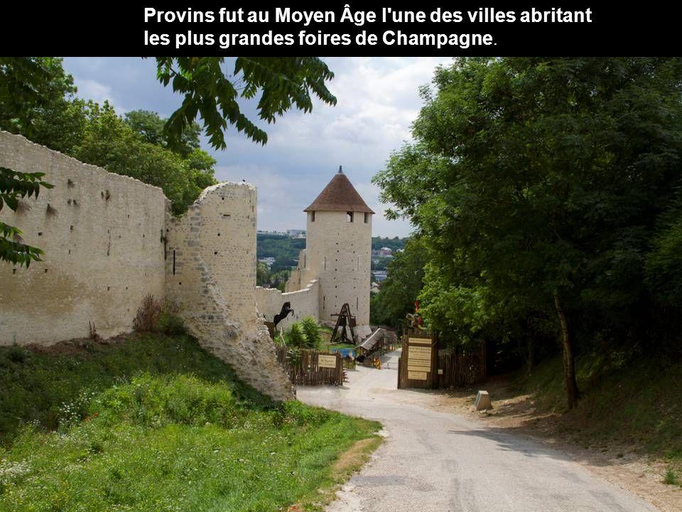 Dès le début du IXe siècle Provins témoignait déjà d une certaine importance.