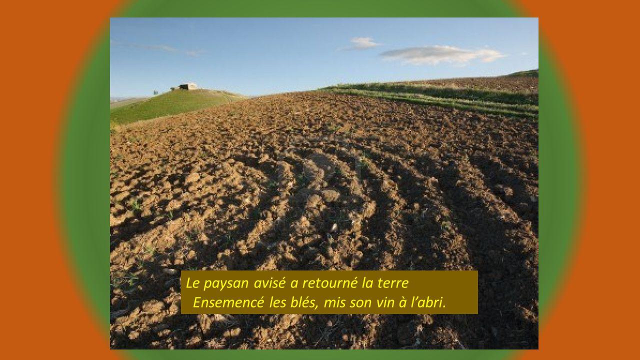 Le paysan avisé a retourné la terre Ensemencé les blés, mis son vin à l'abri.