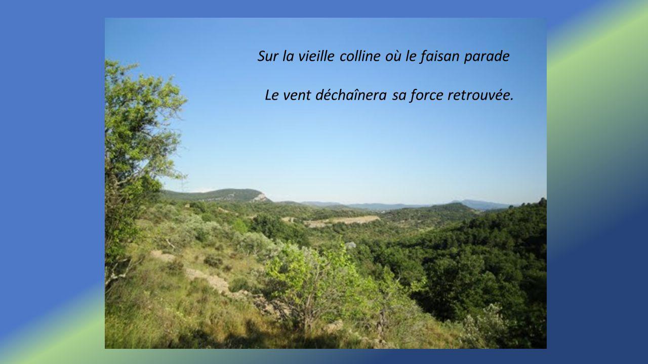 Sur la vieille colline où le faisan parade Le vent déchaînera sa force retrouvée.