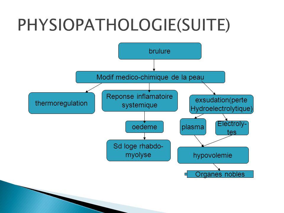 brulure thermoregulation Reponse inflamatoire systemique exsudation(perte Hydroelectrolytique) Modif medico-chimique de la peau oedeme Sd de loge rhab