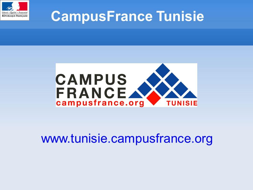 Sommaire Stage de PFE en France Inscription en Master et/ou en école d'ingénieur (1ère / 2ème année du cycle ingénieur) Intégrer le cycle d ingénieur dans le cadre d un partenariat Demande de visa