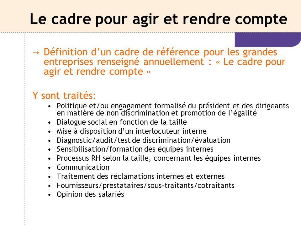 Le cadre pour agir et rendre compte → Définition d'un cadre de référence pour les grandes entreprises renseigné annuellement : « Le cadre pour agir et