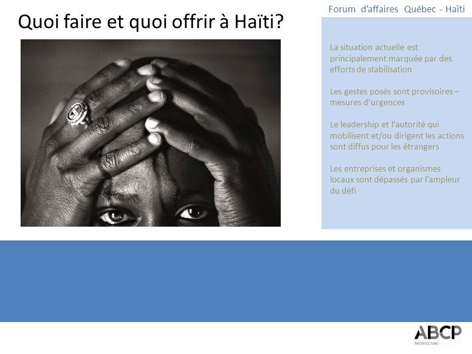 Quoi faire et quoi offrir à Haïti.