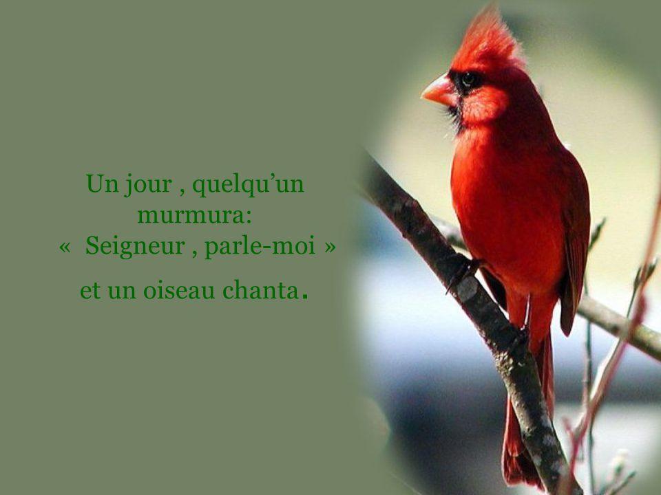 Un jour, quelqu'un murmura: « Seigneur, parle-moi » et un oiseau chanta.