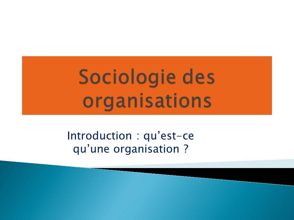 Introduction : qu'est-ce qu'une organisation ?