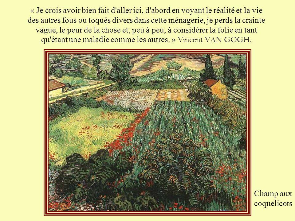 Van Gogh entra le 8 mai 1889 à l'asile de Saint-Rémy de Provence. Il y séjourna jusqu'au 16 mai 1890. Une semaine après son entrée, Vincent fut autori