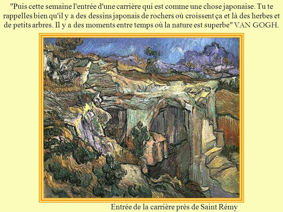 Mais la maladie psychique n'est qu'un aspect du génie de Van Gogh, car percevoir des choses qui sont inaccessibles à la plupart des hommes signifie d'