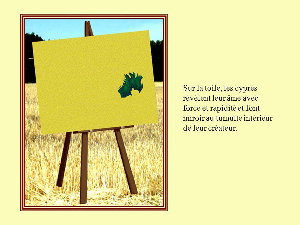 Sur la toile, les cyprès révèlent leur âme avec force et rapidité et font miroir au tumulte intérieur de leur créateur.