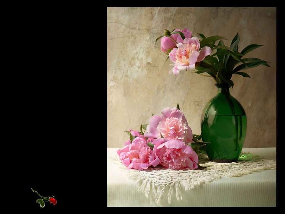 La vie est courte mais il ya toujours suffisamment de temps pour la courtoisie. Ralph Waldo Emerson