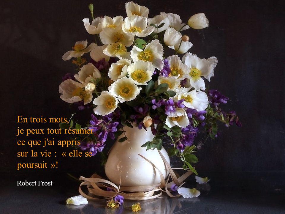 Une vie inutile est une mort anticipée. Goethe