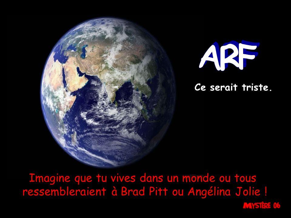 Imagine que tu vives dans un monde ou tous ressembleraient à Brad Pitt ou Angélina Jolie .