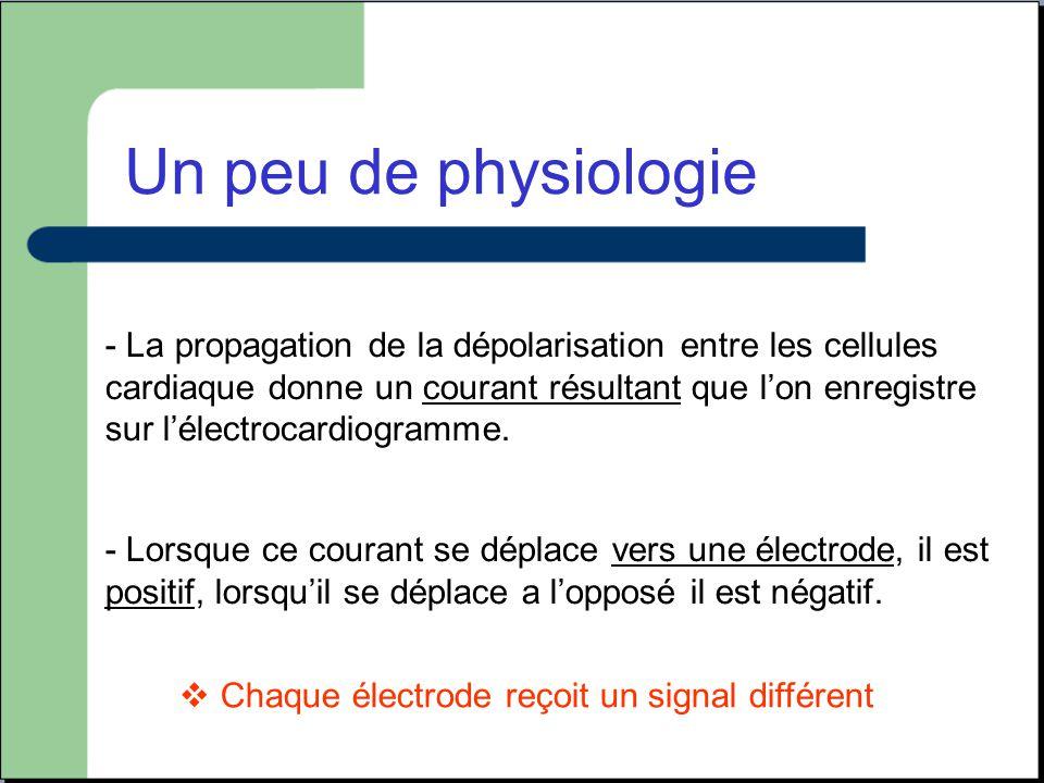 - La propagation de la dépolarisation entre les cellules cardiaque donne un courant résultant que l'on enregistre sur l'électrocardiogramme. - Lorsque