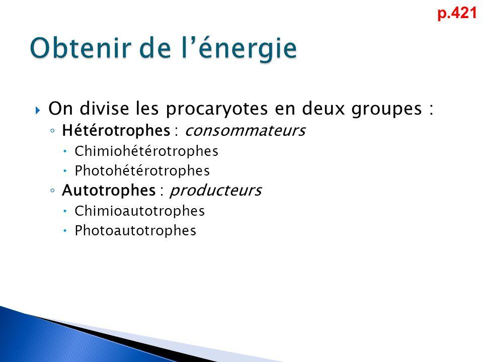  On divise les procaryotes en deux groupes : ◦ Hétérotrophes : consommateurs  Chimiohétérotrophes  Photohétérotrophes ◦ Autotrophes : producteurs  Chimioautotrophes  Photoautotrophes p.421
