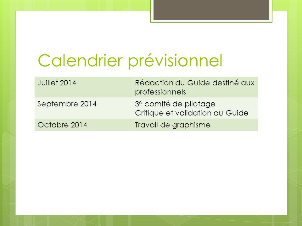 Calendrier prévisionnel Juillet 2014Rédaction du Guide destiné aux professionnels Septembre 20143 e comité de pilotage Critique et validation du Guide Octobre 2014Travail de graphisme